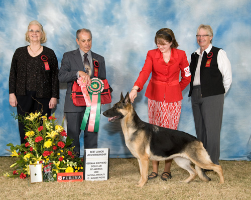 Best Junior Handler 2008 GSDCA National Specialty Show
