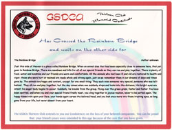 13 Club Rainbow Bridge Certificate