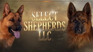 Select Shepherds
